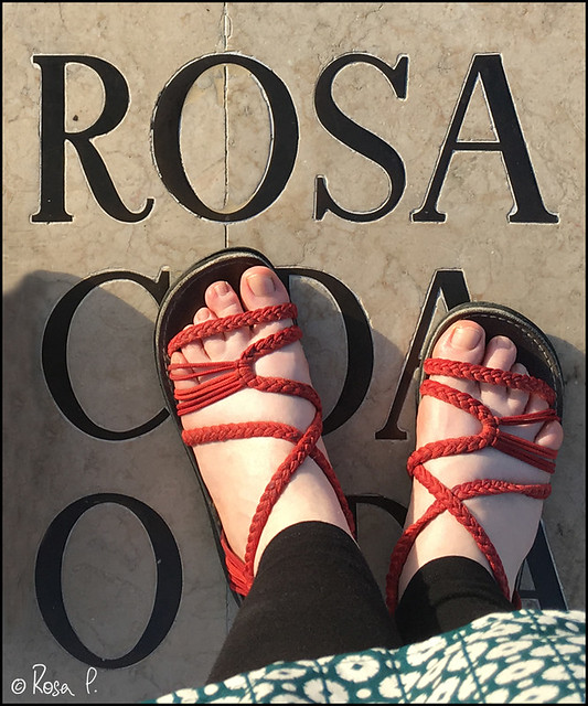 Portugal - Lisbon - Rosa02