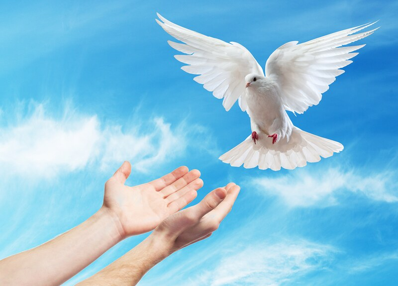 Không lắng nghe Thần Khí, đức tin của chúng ta sẽ lạnh giá - Ảnh minh hoạ 2