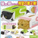 貓奴玩具人必須要有!「面紙盒中的摺耳貓」第二彈 新色登場!ハコティッシュフォールド2