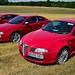 A trio of Alfa GTs