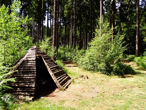 Cabane de nutons