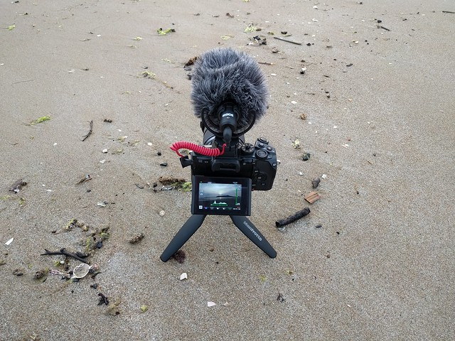 OM-D E-M1, RODE VideoMicro