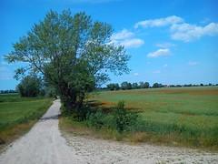 On the bike, around Świdnica:)