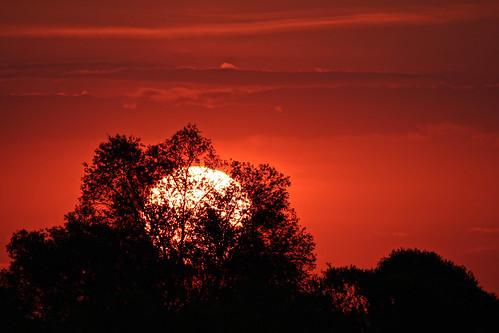 summer solstice sunrise sun nature