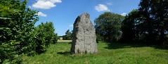 Le menhir dit « La Pierre Longue » près d'Iffendic - Ille-et-Vilaine - Juin 2017 - 06 - Photo of Boisgervilly