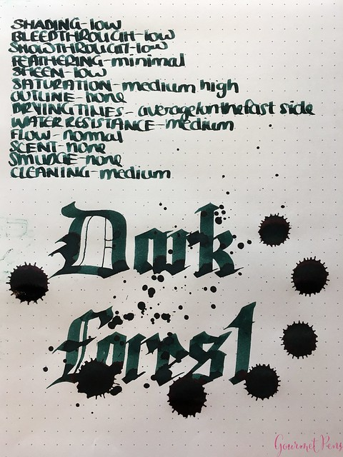 Ink Shot Review Diamine Anniversary Dark Forest @AppelboomLaren 7