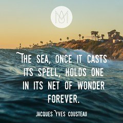 The Sea, Net of Wonders: Inspirational Quote