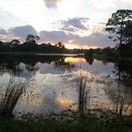 arbors-daybreak
