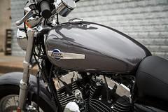 Harley-Davidson XL SPORTSTER 1200 CUSTOM 2017 - 8