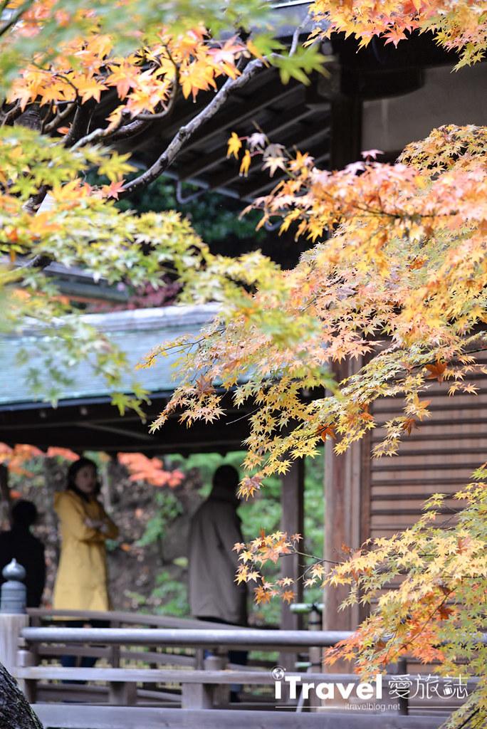 京都赏枫景点 永观堂 (19)