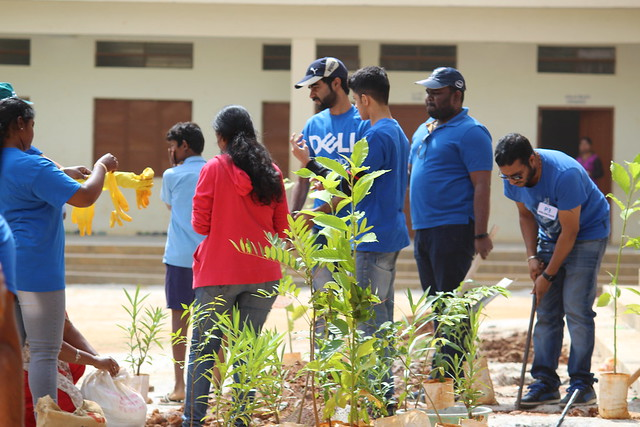 P3 Tree Plantation, Canon EOS 1300D, Canon EF-S 55-250mm f/4-5.6 IS II
