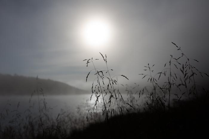 Tenojoki Lappi Utsjoki sumu sumuinen aamu elokuu Teno Lappland  (1 of 1)