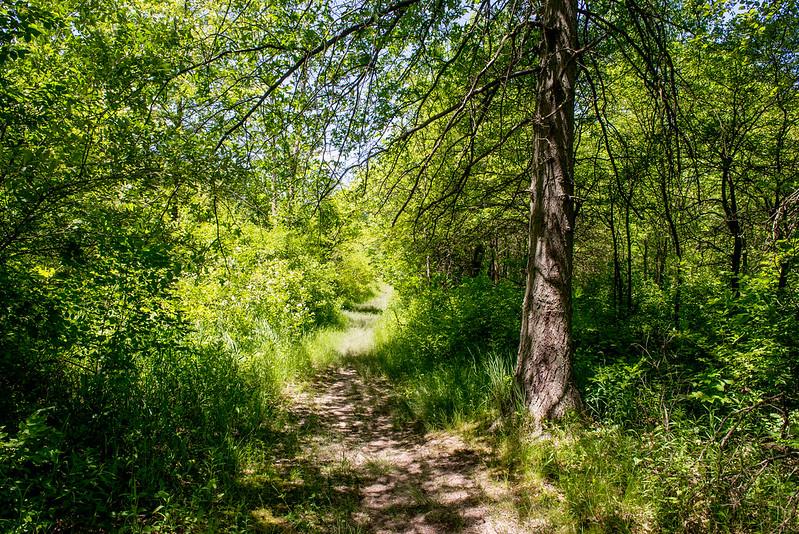 Mengerson Nature Preserve - June 7, 2017