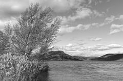 Salagou Lake