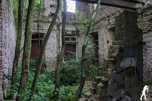 Lost Places: Rittergut Wolfskuhlen