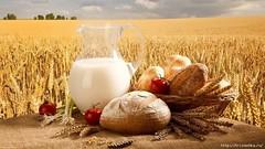 «Золотые колосья душистого хлеба» - районный праздник, посвящённый окончанию уборки Урожая 2017 года