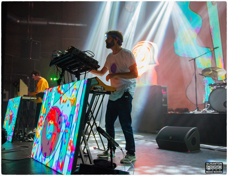 Animal Collective-13.jpg