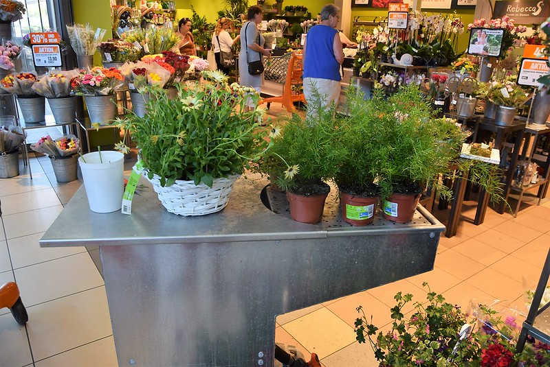 Migros Watering Trough 29.05.2017