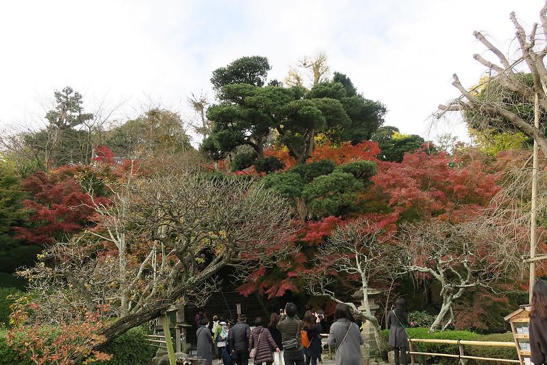 Hasadera Temple, Kamakura, Japan