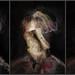 3 merkels by chrisfriel