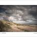 Ross Sands by tobchasinglight