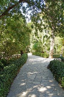 Israel-06719 - Garden Tomb