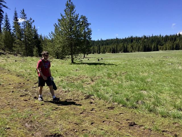 Bryce hunting Morels