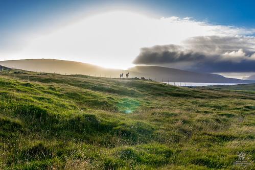 føroyar faroe færøerne faroeislands miðvágur vágar fo