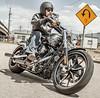 Harley-Davidson 1690 SOFTAIL BREAKOUT FXSB 2014 - 8