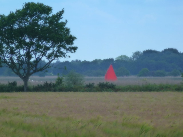 Red sail, Panasonic DMC-TZ20