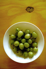 gooseberry partial harvest