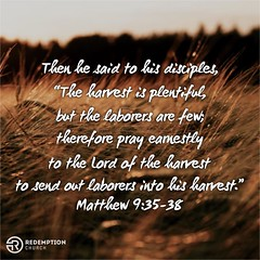 """And Jesus went throughout all the cities and villages…When he saw the crowds, he had compassion for them, because they were harassed and helpless, like sheep without a shepherd. Then he said to his disciples, ""The harvest is plentiful, but the laborers a"