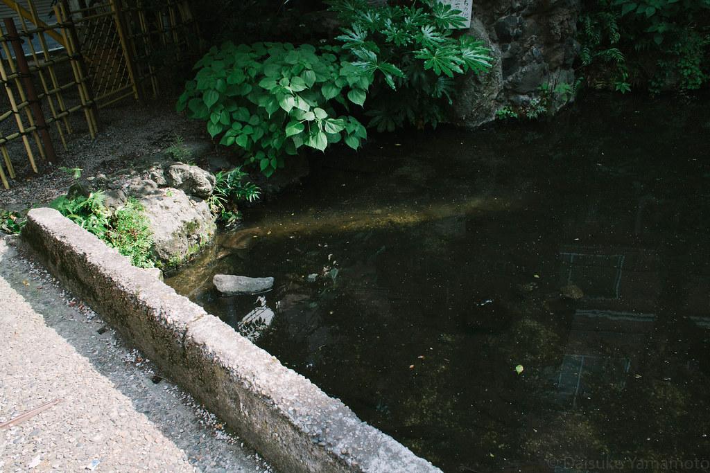 津の守弁財天 策の池