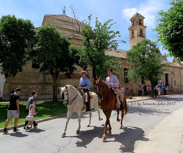 Día de san Isidro.Romería en Alameda.(Málaga)