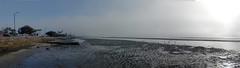 Misty May Morn Panorama Sandgate (3)