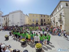 Festitro 2017 Lorxa-28