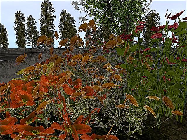 Satudarah MC Nederland -   A Little Patch of Autumn