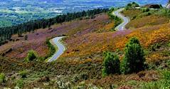 Routes et paysages - Rutas y paisajes