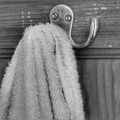 142/365 Towel