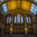 Natural History Museum by fede_gen88