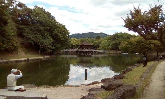 Umikido Gazebo, Nara park