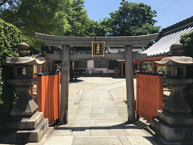 sumiyoshitaisya115