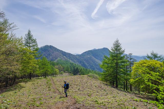 高丸山・日蔭名栗山・鷹巣山を眺めながら進む