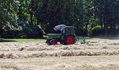Britzer Garten Arbeit