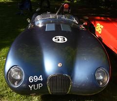 Jaguar C-Type Proteus