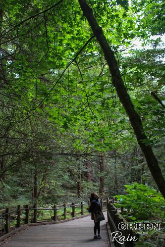 170528d Miur Woods _054