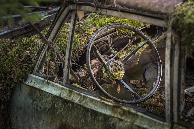 'Beauty of rust' with macro photographer Alberto Ghizzi Panizza