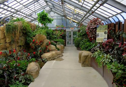 Greenhouse at the botanical garden