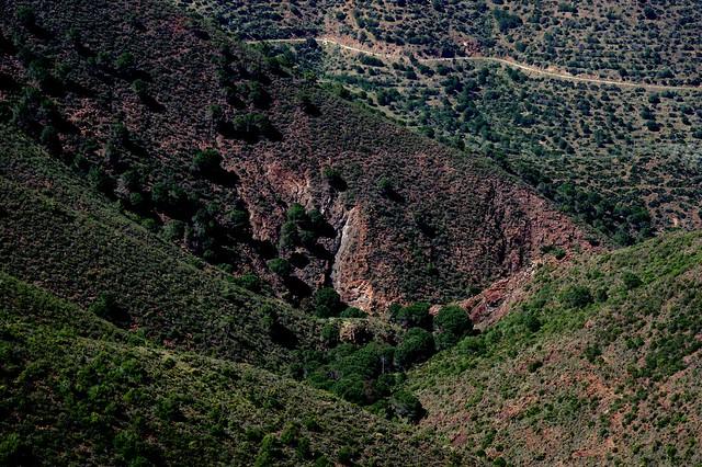 Sierra de Aguas (Málaga) (30)