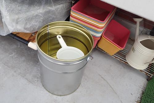 睡蓮鉢がわりにペール缶